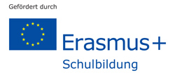 Erasmus+ Education & Culture
